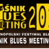 Kraśnik Blues Meeting 2015: Kraków Street Band