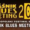 Kraśnik Blues Meeting 2015: Pawkin